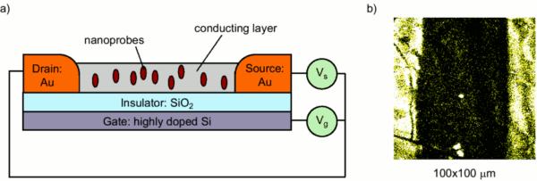 (a) field effect transistor (b) single-molecule fluorescence image